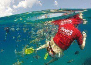 snorkelling cabarete sosua