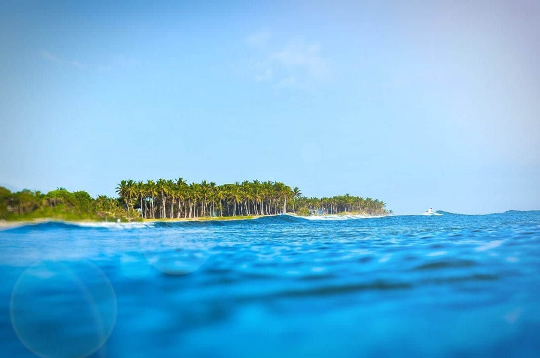 Surf Camp Job