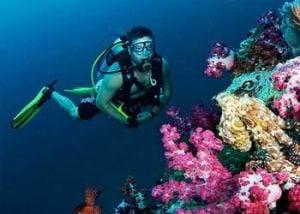 Diving Sosua