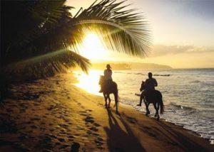 horse riding cabarete